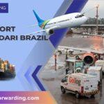 Layanan Jasa Ekspedisi Cargo Import dari Brazil ke Indonesia